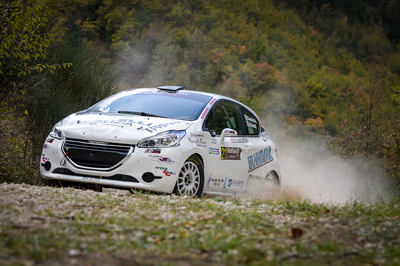 Christopher Lucchesi a Lucca su Peugeot 208 R2 della GF Racing